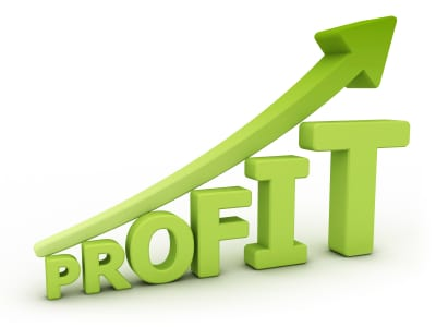 How Much Profit Should You Expect To Make?